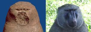 Thoth og bavian