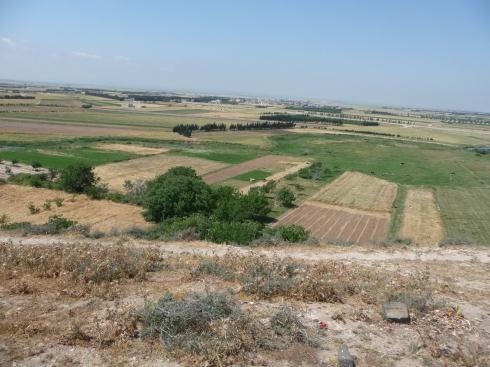 Kadesh - Set fra Tellen