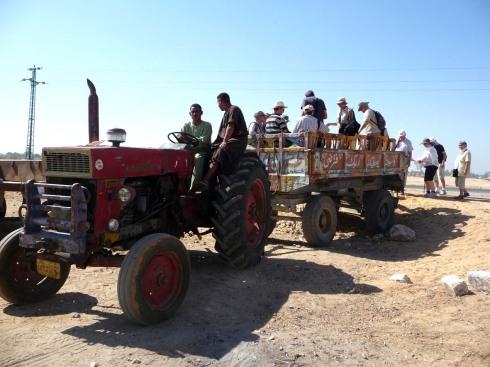 Traktor_Pia
